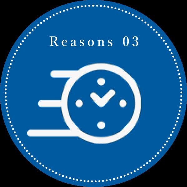 Reason 03